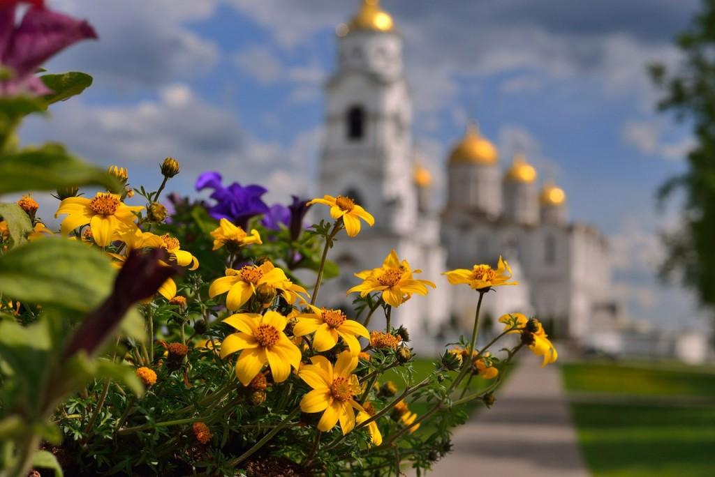 Владимир весна-лето 01