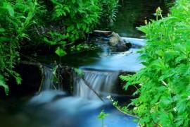 Гороховец, Маленькие водопадики р.Могилинка