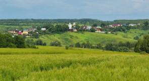 Лето в селе Горицы, Суздальский р-н