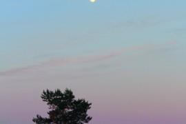 Лето для закатов и рассветов… Владимирская область.