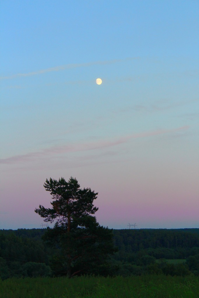 Лето для закатов и рассветов... Владимирская область.