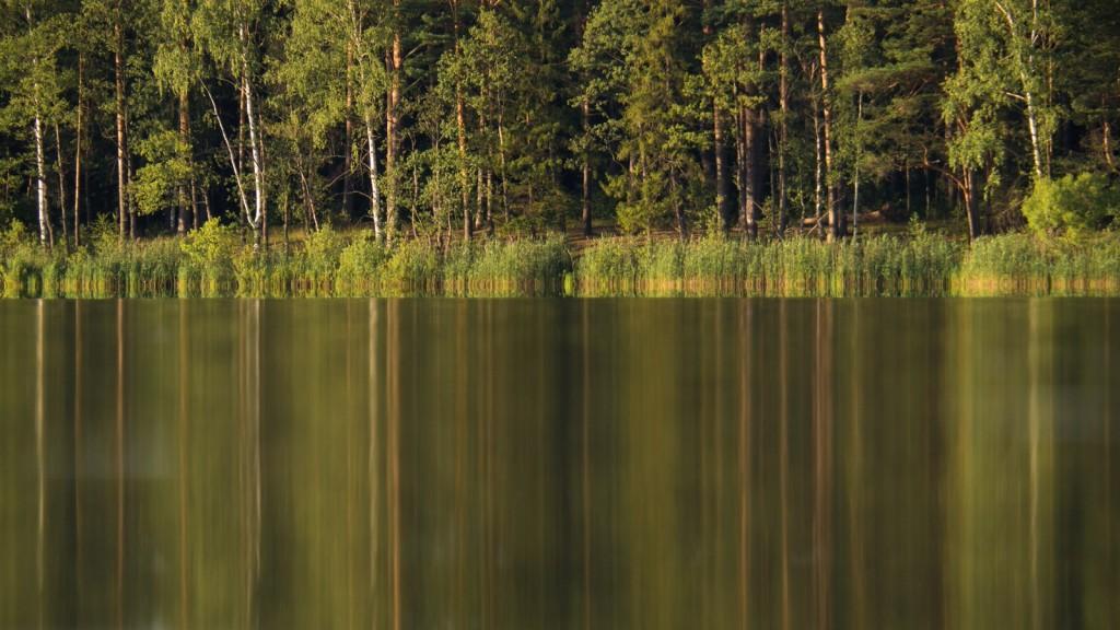 Чёрное (Шитское) озеро