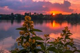 Еще один огненный закат на Содышке (Владимир, август 2017)