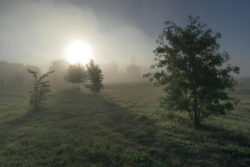 Когда тумана слишком много. Боголюбовский луг 01