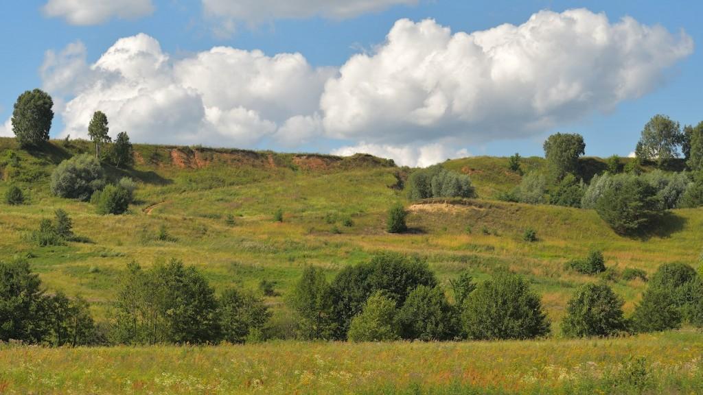 Окрестности деревни Малый Санчур, Меленковский р-н