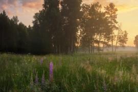 Серия летних рассветов в Вязниковском р-не