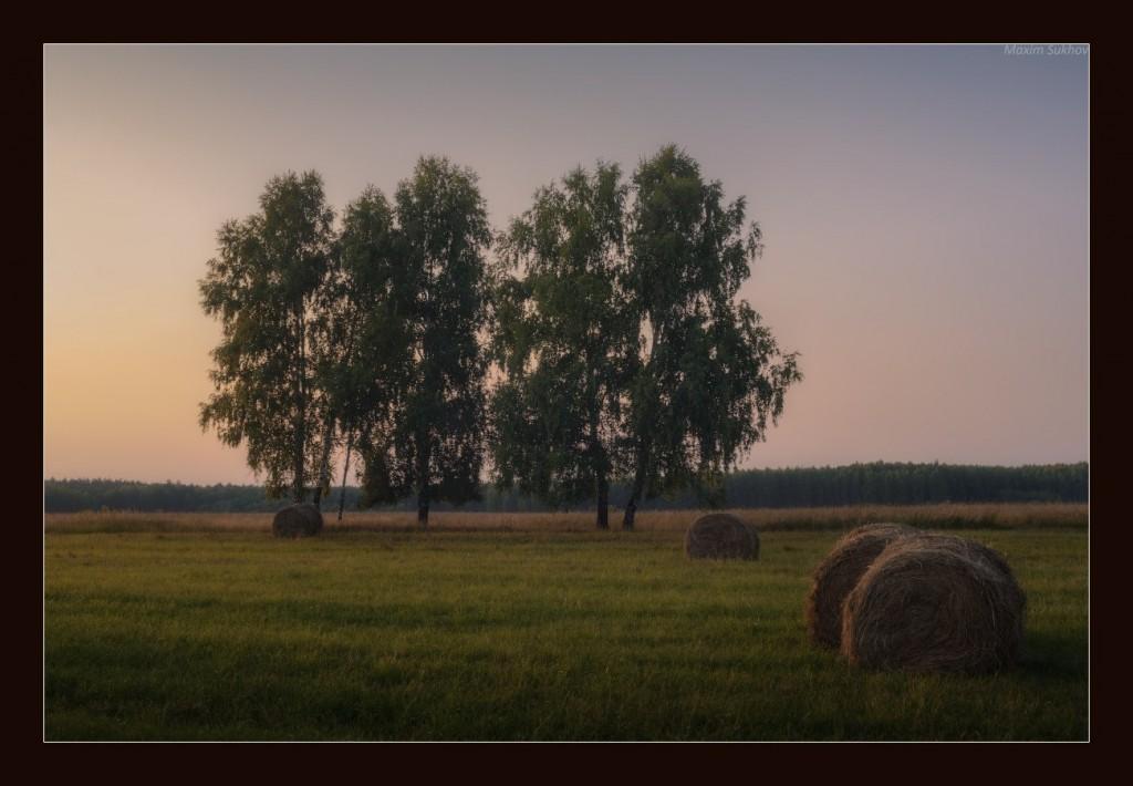 Такой жаркий, тихий, спокойный конец августа (Вязниковский р-он, д.Копцево)