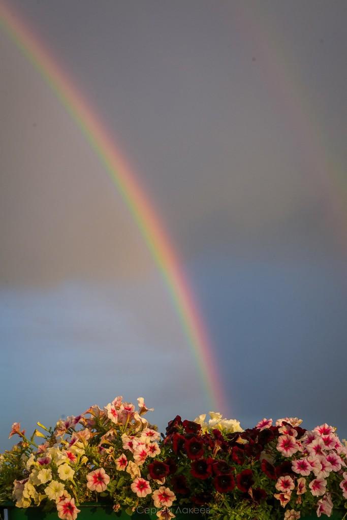 Летняя радуга во Владимире 01