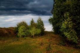 Наступление осени в Вязниковском районе