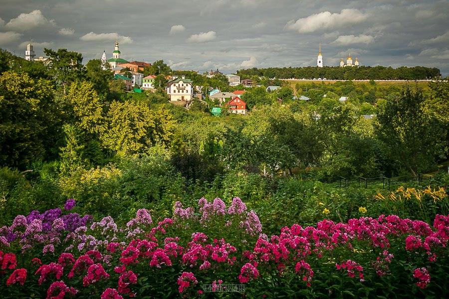 Патриаршие сады в августе 2017 03