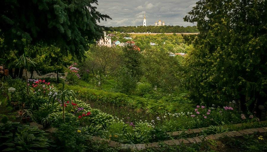 Патриаршие сады в августе 2017 05