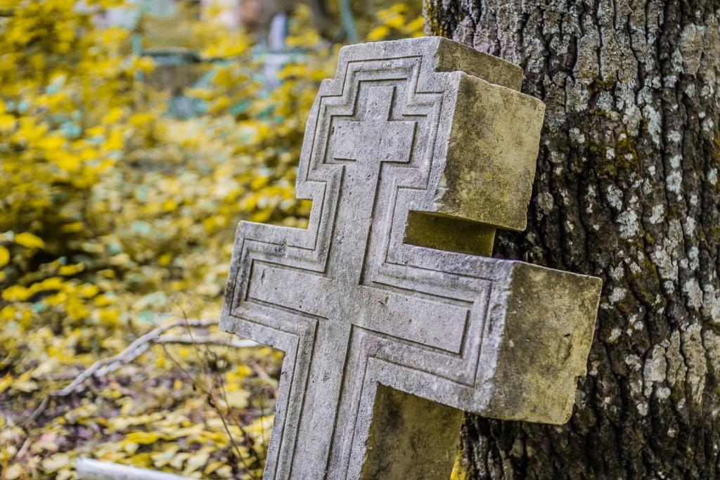 Погост Венец, церковь Спаса Преображения 03