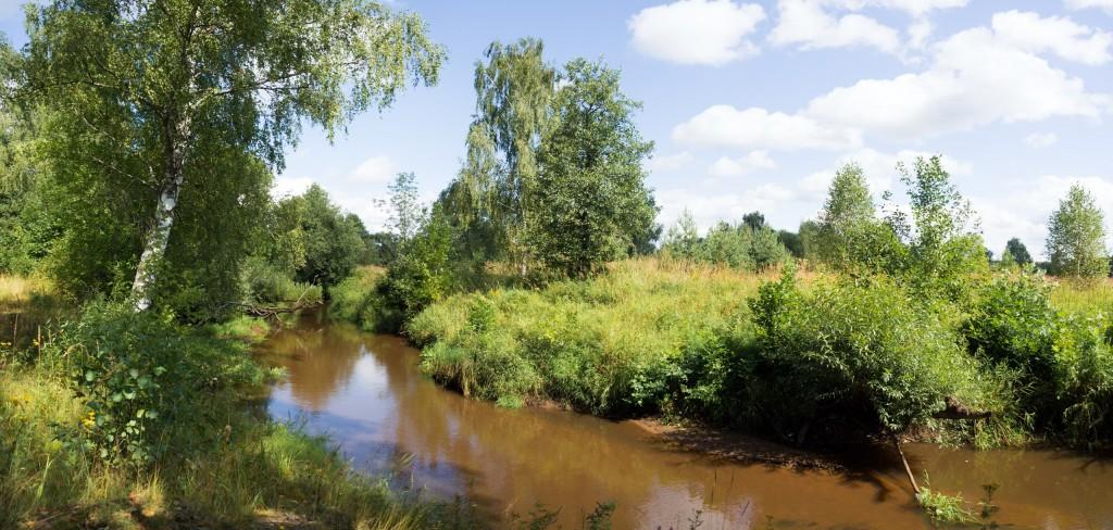 Река Вольга рядом с д. Емельянцево