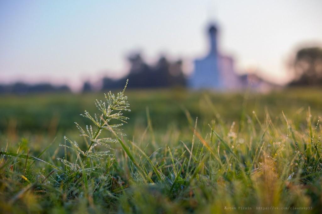Утренняя прогулка к храму Покрова на Нерли 03