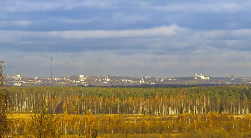 Борисо-Глебское урочище, Судогодский район 10
