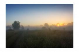 Вязниковский р-он, д.Золотая грива. «Хранимый солнцем»