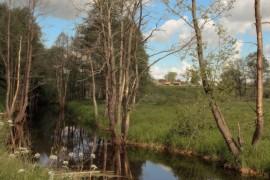 Деревня Злобино, река Унжа, Меленковский р-н
