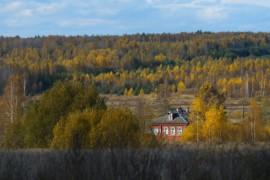 Деревня Пеньки, Судогодский р-н