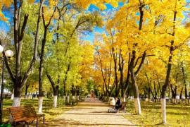 Золотая осень в Меленках 2017
