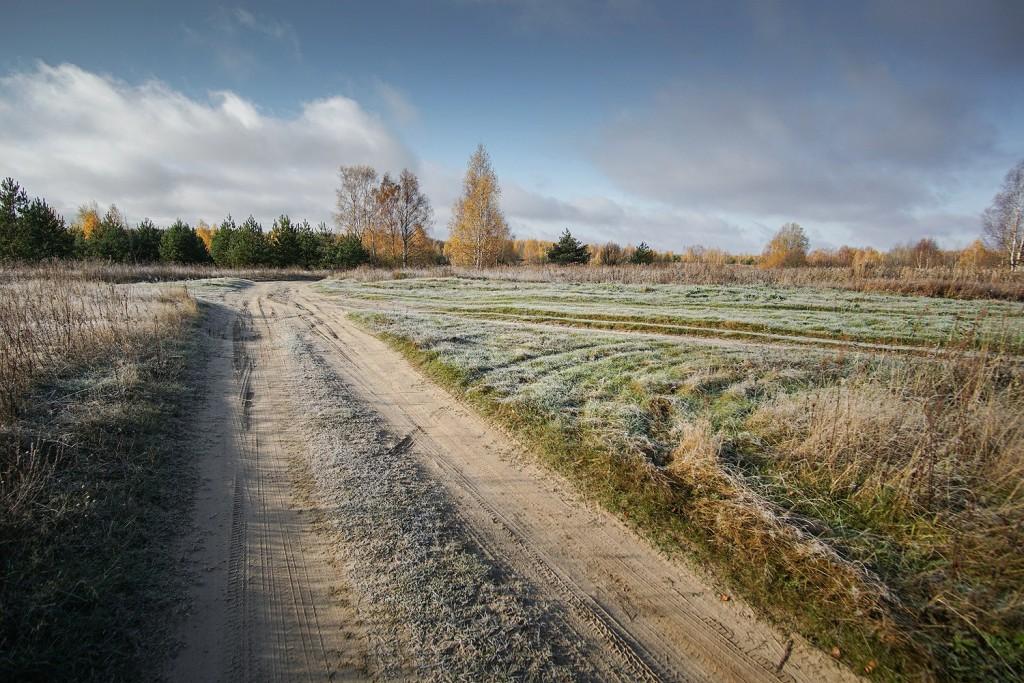 Морозное утро во владимирской деревне 04