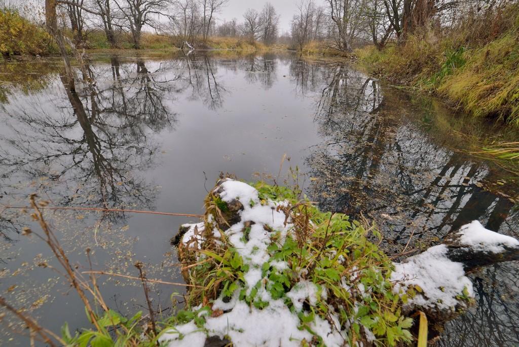 Накануне зимы в Загородном парке ( Владимир, конец октября) 03