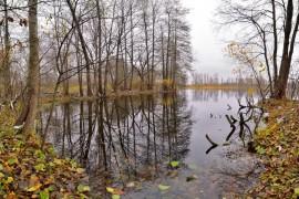 Осенние зеркала ( Владимир, конец октября)