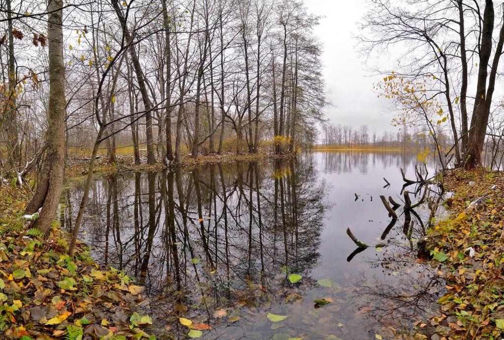 Осенние зеркала ( Владимир, конец октября) 01