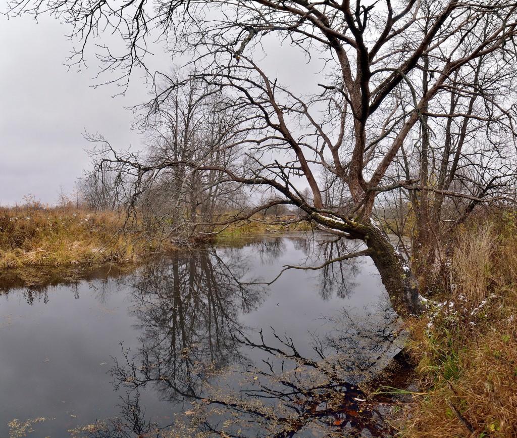 Осенние зеркала ( Владимир, конец октября) 02