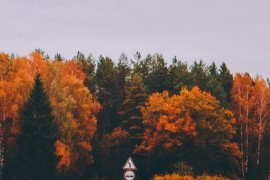 Осенние просторы Владимирской области