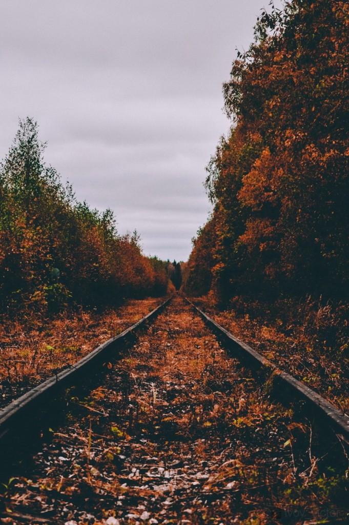 Осенние просторы Владимирской области 05