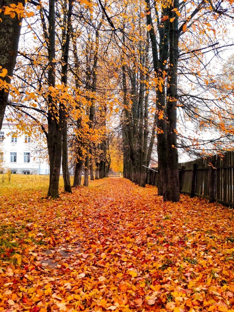 Осенняя прогулка по городу Меленки 05