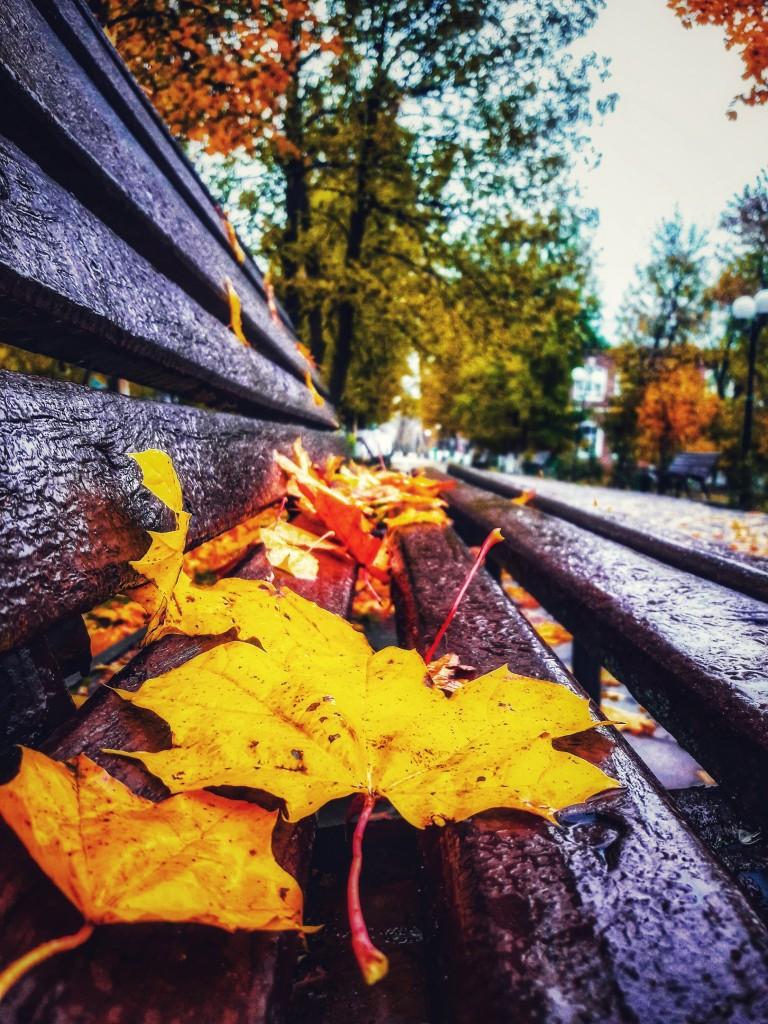 Осенняя прогулка по городу Меленки 06