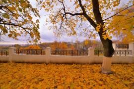 Осень во Владимире, или в одном шаге от зимы