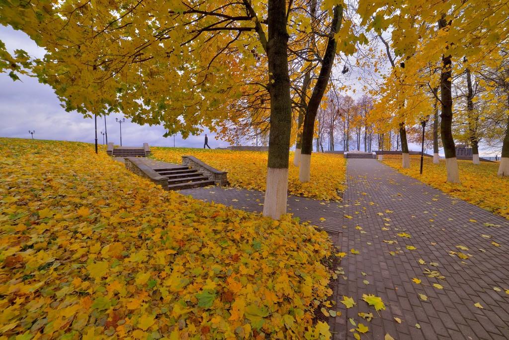 Осень во Владимире, или в одном шаге от зимы 04