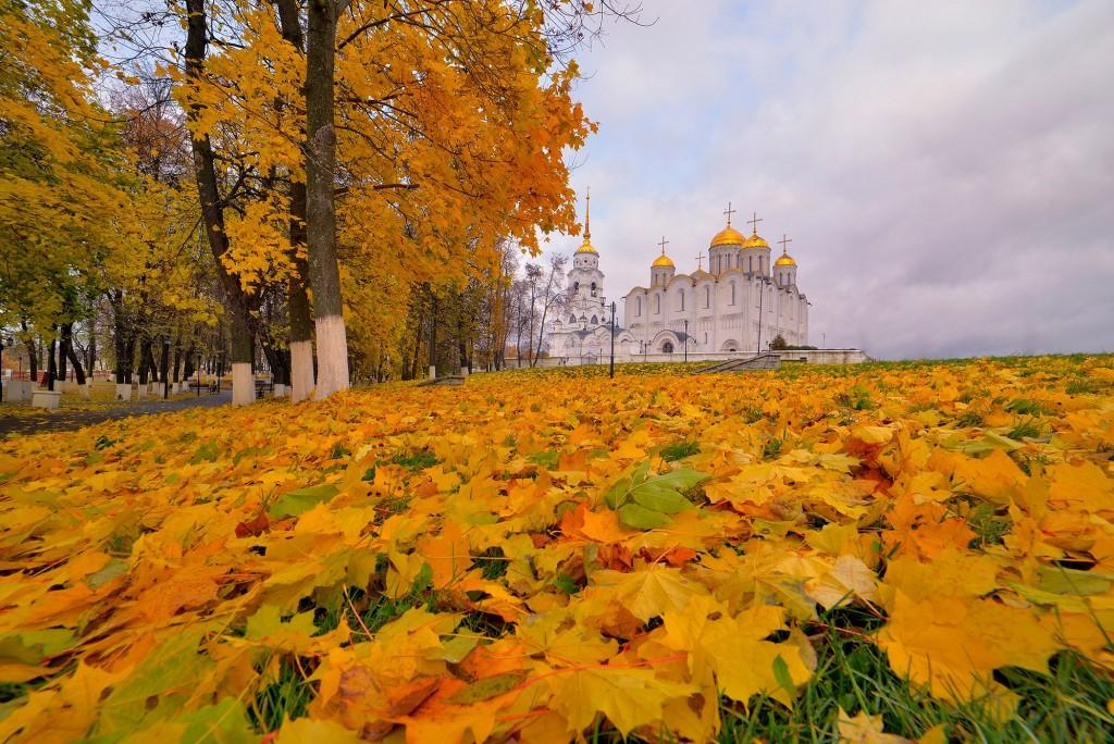 Осень во Владимире, или в одном шаге от зимы 05