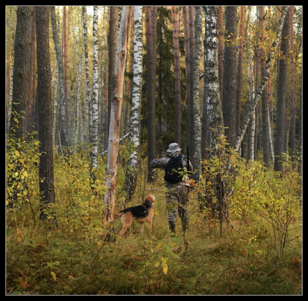 Осень в Серковских лесах 02