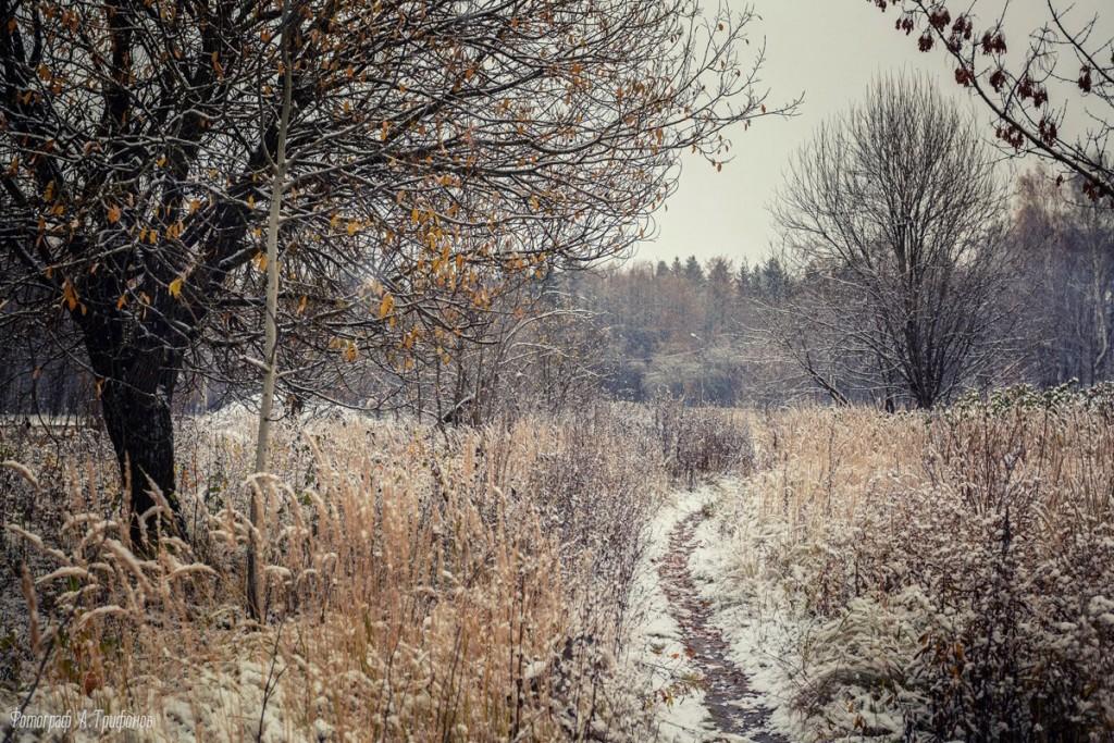 Первый снег в муромском городском парке 01