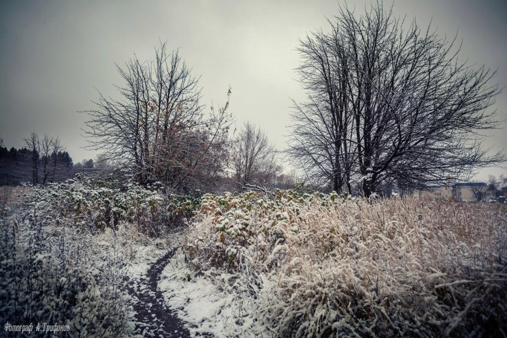 Первый снег в муромском городском парке 03