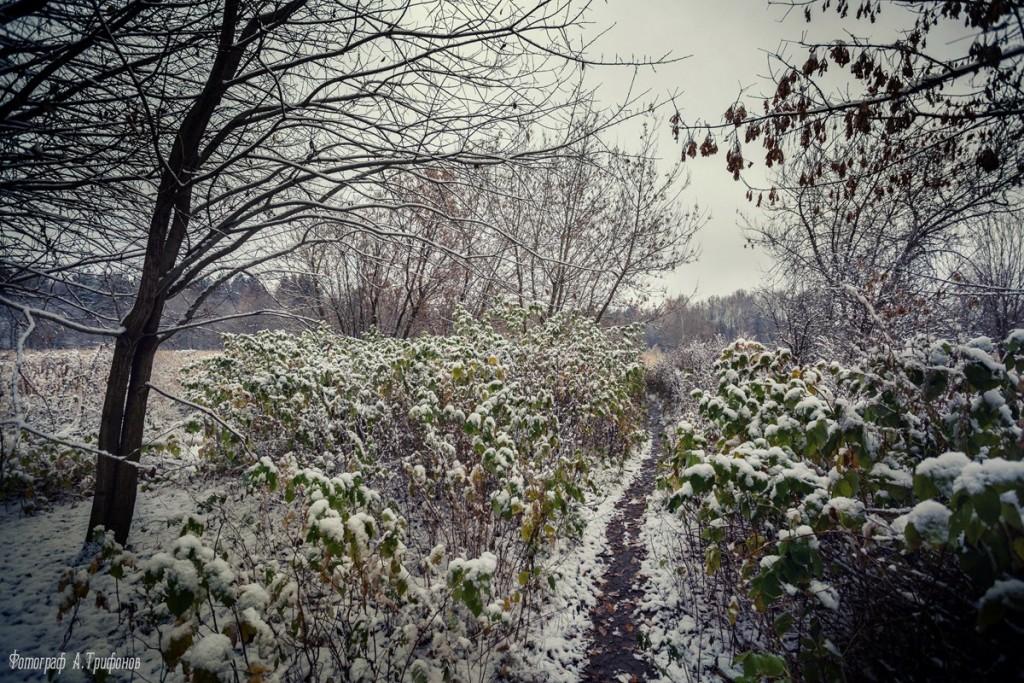 Первый снег в муромском городском парке 05