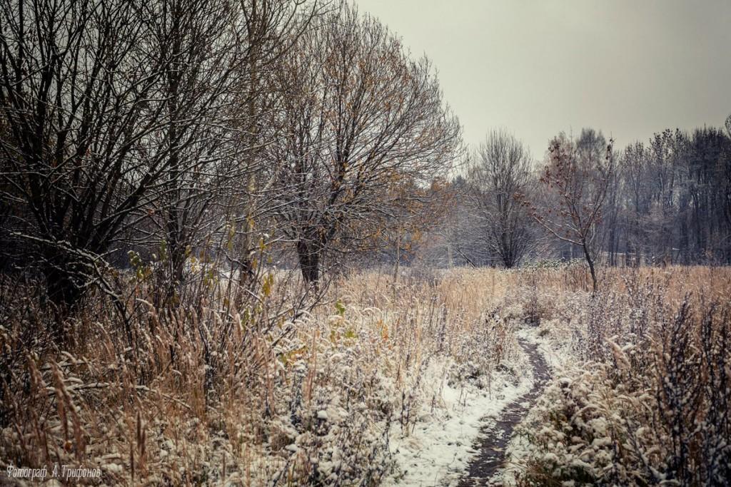 Первый снег в муромском городском парке 06