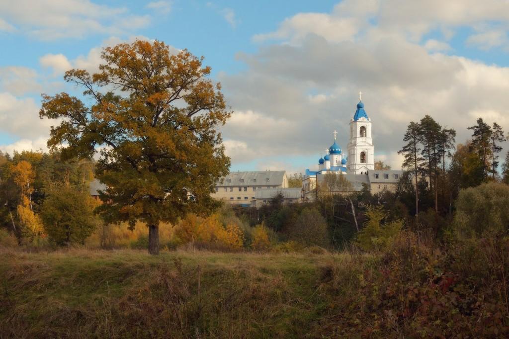 Село Спас-Купалище, Судогодский р-н