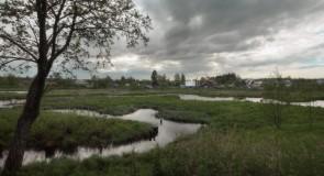 Сильно петляющее русло Тальши у поселка имени Горького, Камешковский р-н