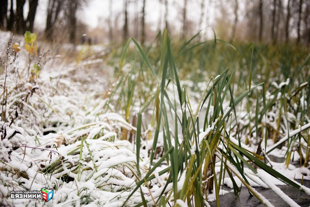 Снежная осень в Вязниках 02