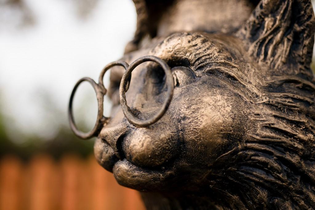 Трёхсотлетний дуб-старожил и кот ученый 06