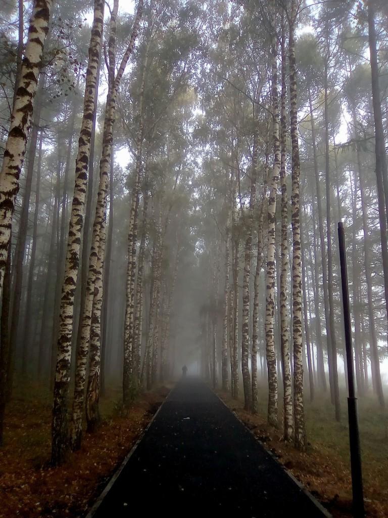 Утренний туман над Вязниками 02