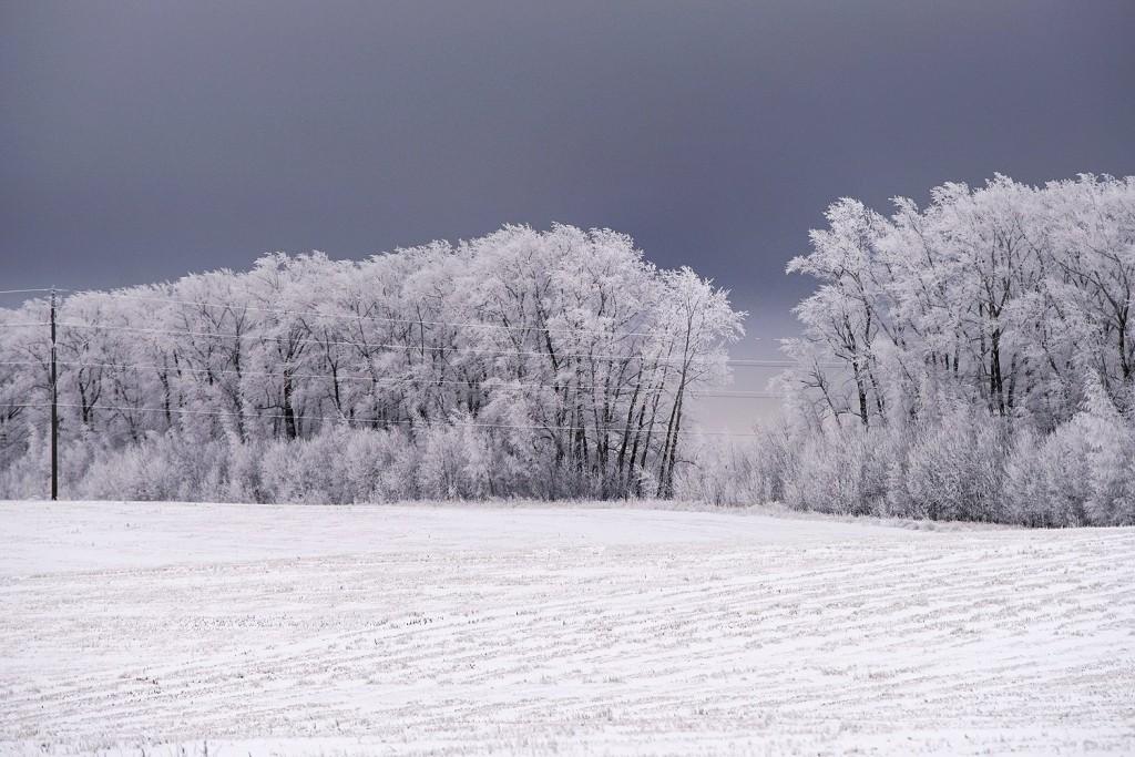 Красоты зимних дорог 02