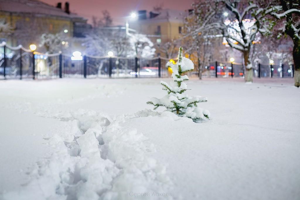 Снежный Владимир неповторим! 08
