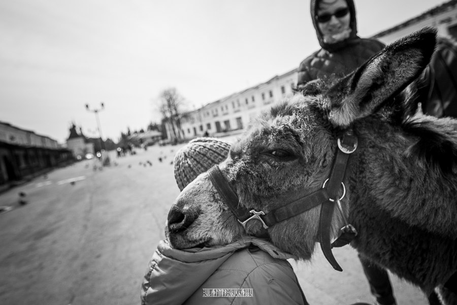 Юрьев-Польский в черно-белых тонах от Владимира Чучадеева 04