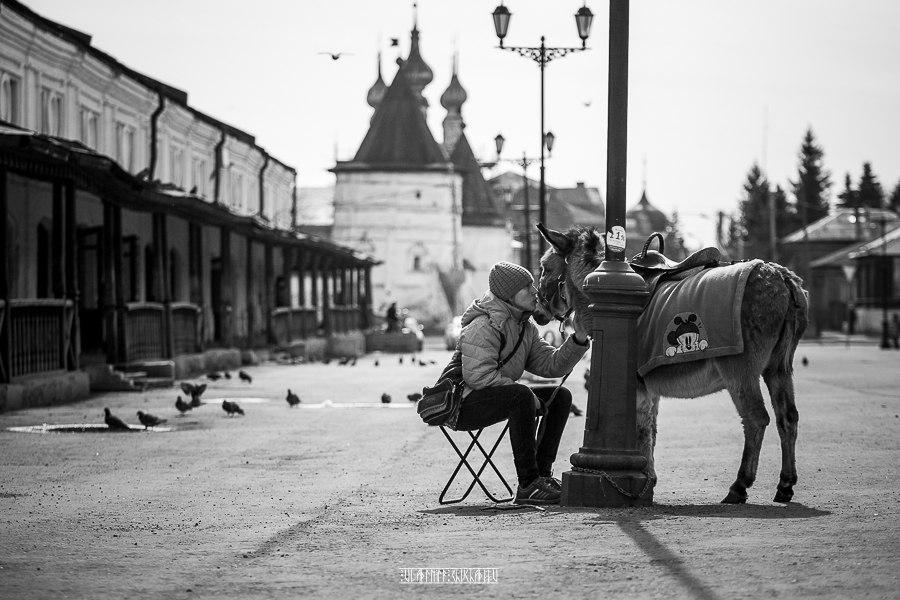 Юрьев-Польский в черно-белых тонах от Владимира Чучадеева 05