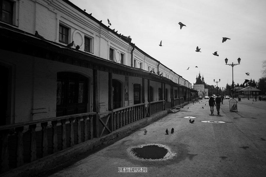 Юрьев-Польский в черно-белых тонах от Владимира Чучадеева 06
